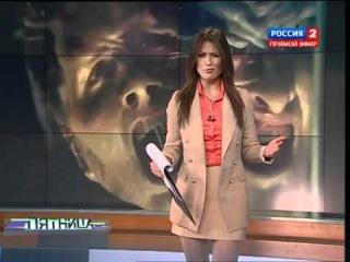 Анна Кастерова, программа