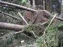 Ураган в Москве 21.06.1998