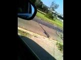 Corvette ZR1 FAIL (В Голосовании - ролик 4)