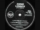 Annie Lennox - Little Bird (N'joi Remix)