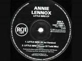 Annie Lennox - Little Bird (N'joi Remix)