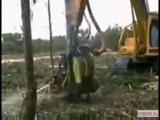 однорукий лесной монстр.flv