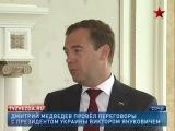 Д. Медведев обсудил с В. Януковичем развитие экономического сотрудничества