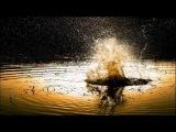 Autumn Park - Old Oliver (Takashi Watanabe Remix)