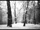 Миха Гам(СнД)-Зима Дважды