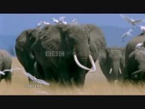 BBC &amp London Symphony Orchestra - Earth Song