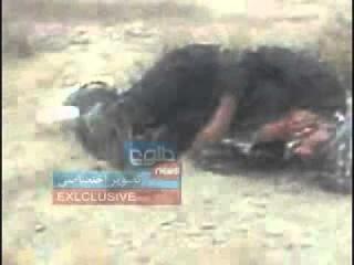 Iranian Border Forces Mistreat Afghan Refugees 01 01 2011