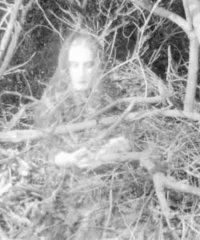 Ghost Wandering