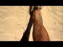 Stradbroke Island's sand