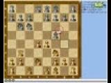 68 Шахматы. Ферзевый гамбит.
