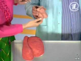 Елена Малышева делает массаж яичек