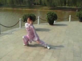 趙堡太極拳/108式 (大架) Чжао Бао Тайцзи Цюань/ 108 форма