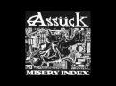 Assück - Dataclast