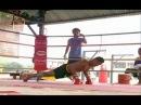 Seanchai Training Highlight