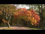 Национальный парк Шенандоа  Shenandoah National Park