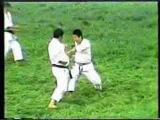 The Nakayama Legacy - Heian Godan Bunkai (Karate Shotokan)