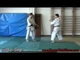 Bunkai Kumite Juroku (Shito-Ryu)