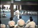 Soke Teruo Hayashi Stage Palermo teaching Kata Pachu