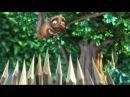 Big Buck Bunny Surround Sound HD 720p like pixar short movie