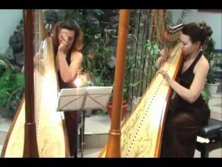 Feelings Harp Cover - Espressivo Арфа