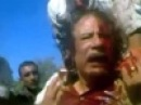 Найти и судить убийц Каддафи обещает Переходный национальный совет Ливии - Первый канал