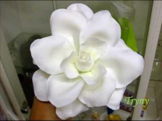 Porcelana fria Flowers & Modelling Cold porcelain