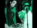 Lil Wayne - A Milli (dubstep remix)