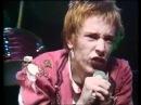 The Sex Pistols  (1976)