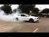 2011 Shelby GT500 burning the tires down. Sweet burn out!!!