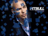 PITBULL - FEELS GOOD(NEW SINGLE 2-01-10)VERRY HOOT+DOWNLOAD