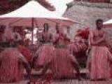Terminator - Tribal Dance