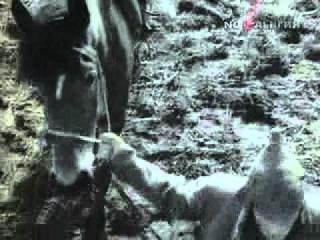 Александр Барыкин - Кресты и звезды (клип)