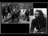 Dub Incorporation ft. Tiken Jah Fakoly - Life