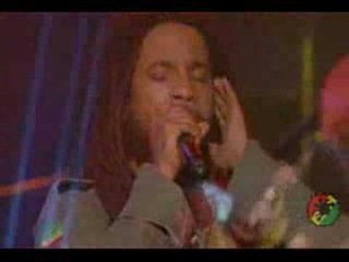 Damian Marley and Stephen Marley- Pimpas Paradise Live Miami
