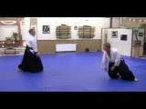 Evolutionary Aikido, Aikido Montreux, Patrick Cassidy