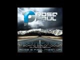 Gabriel &amp Dresden Vs. Mizar B-Tracking Satori Down (Elfsong Remix) Rose &amp Paul Mash Up