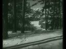 Белый Клык (1946) 1/8