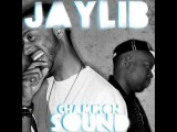 Jaylib- The Official