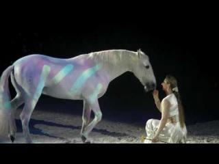 Appassionata Voyage Firenze Balletto Cavallo Bianco Fantastic