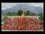 Ten Madison - A Trip to India