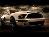 PANTURAL - FORD SHELBY KITT vs. Chevrolet Camaro