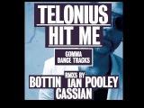 Telonius - Hit Me (Ian Pooley Dub)