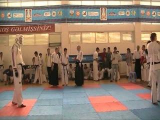 Koshiki karate финал +82кг Баку 2010 Жестков С.