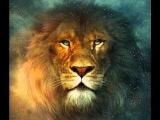 Lebo M - The Lion sleeps tonight.