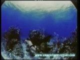 Umberto Pelizzari - Ocean men