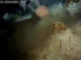 BBC: Мир природы. Секреты подземелий майя
