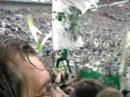 Vfl Wolfsburg Fans auf Schalke Stimmung