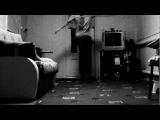 SENSEI Noob :) •[DIOLMUSIC ♫ ]•