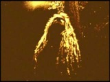 Selah dubb (Babylon 101 video)