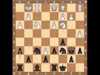 Анализ шахматной партии №8
